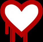 Heartbleed bug: wat houdt het in? | Javelin ICT Eindhoven